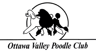 Ottawa Valley Poodle Club Serving Ottawa And Surrounding Areas